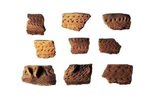 Various rim styles found on ceramic vessels from the Ward site.