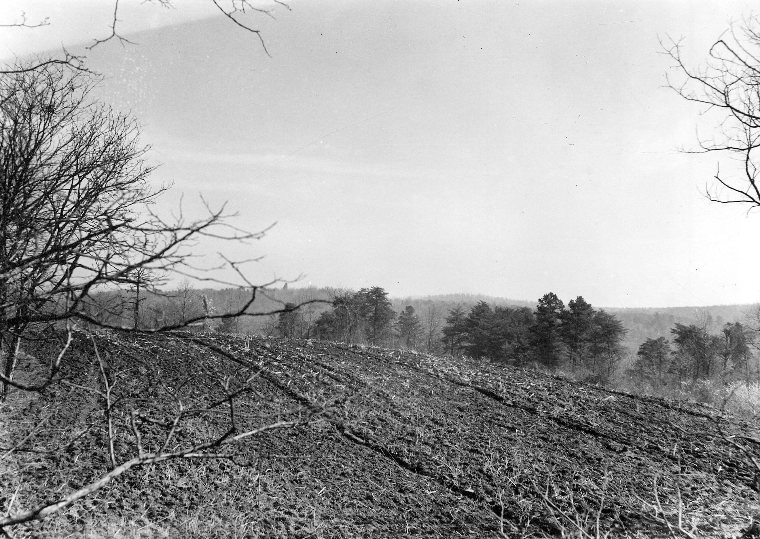 View of Hardaway Site On Top of Ridge (1938)