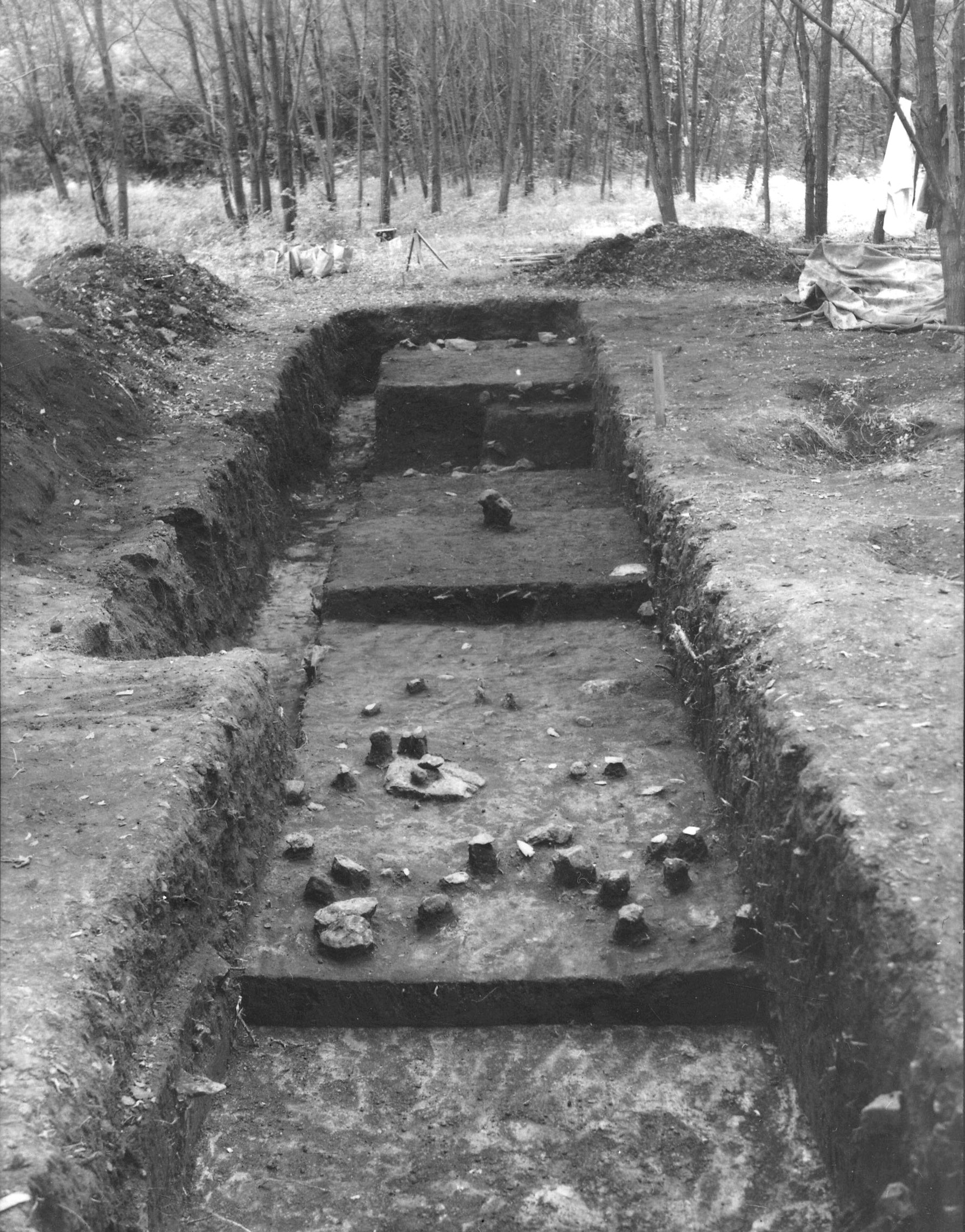 L5 Trench at Hardaway Site (1959)